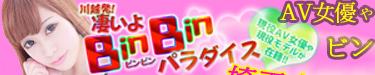 binbinp1