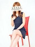 annex03