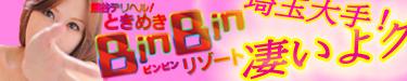 binbinp3